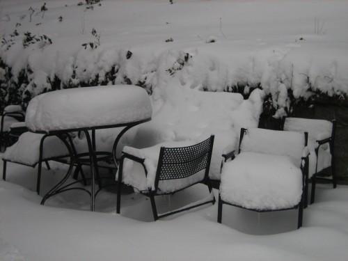 nieve-gatos-y-tor_7-2-09-024